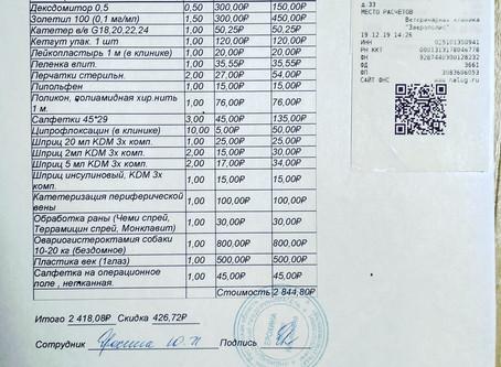 Отчет №62 Стерилизация собаки №19-88 Лола(стая ул.Маршала Жукова/предприятие N)
