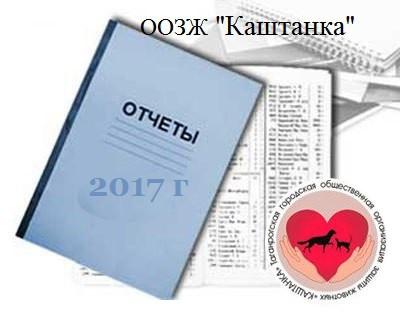 ГОДОВОЙ ОТЧЕТ ЗА 2017 г.