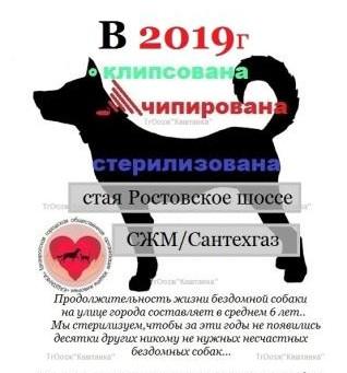 Новости апреля 2019г.
