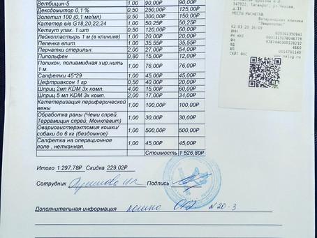 Отчет №14 Стерилизация бездомной кошки №20-3 ФЛЭШКА