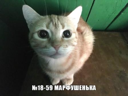 Марфушенька