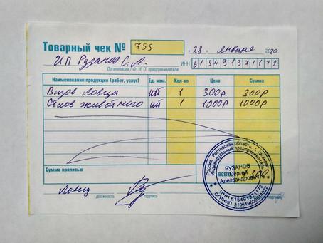 Отчет №5 Стерилизация бездомной собаки №20-9 Рыжуха( ул. Котлостроительная)