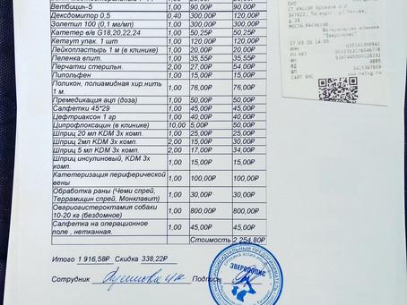 """Отчет №19 Стерилизация бездомной собаки №20-33 ЧУДО(приют """"Бедная мама"""")"""