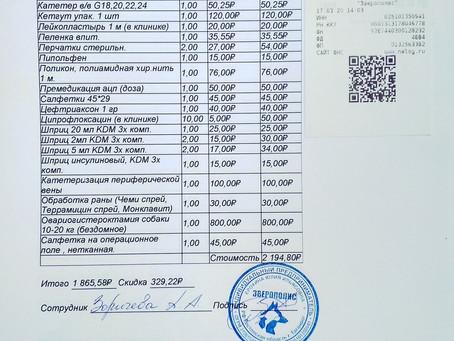 """Отчет №18 Стерилизация бездомной собаки №20-32 ВОРСИНКА(приют """"Бедная мама"""")"""