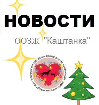 Новости декабря 2019г.