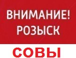 ТАГАНРОГ Розыск совы 2016г.