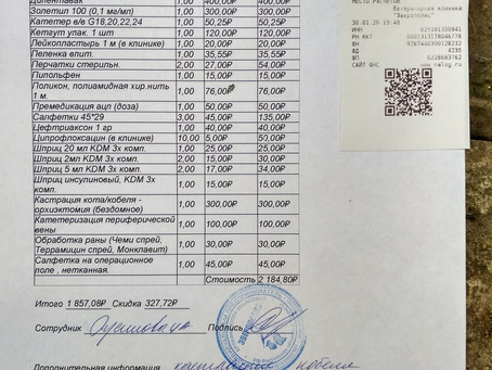 Отчет №7 Кастрация бездомной собаки №20-10 Малой(МФЦ/ул.Ленина)