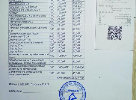 Отчет № 56 Стерилизация собаки №19-75 Юнна (стая Дачное-1)