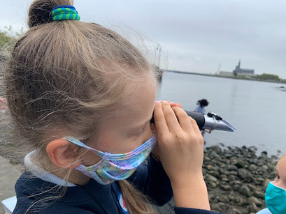 Elementary Classes Visit Hudson River for Annual Study
