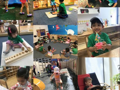Everything You Need to Know About Toddler and Bridge Summer Camp