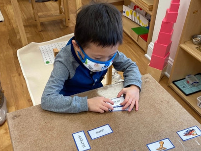 Montessori in a Minute: Three-Part Cards