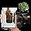 Thumbnail: Карти Динозаври 4Д+