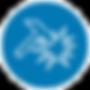 ExOzone ozone disinfection sterilization roboust design