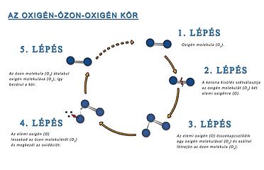 ExOzone ozone oxygen cycle excocem disinfection sterilization