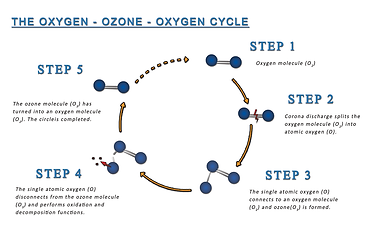 ExOzone ozone oxygen cycle excocem disinfection sterilization