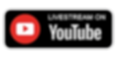 YOUTUBE BUTTONWEB.png
