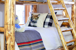 Benchmark Bunkroom Bedding Update