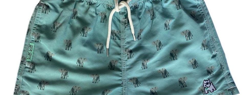 Bañador bermuda de niño azul estampado Elefantes