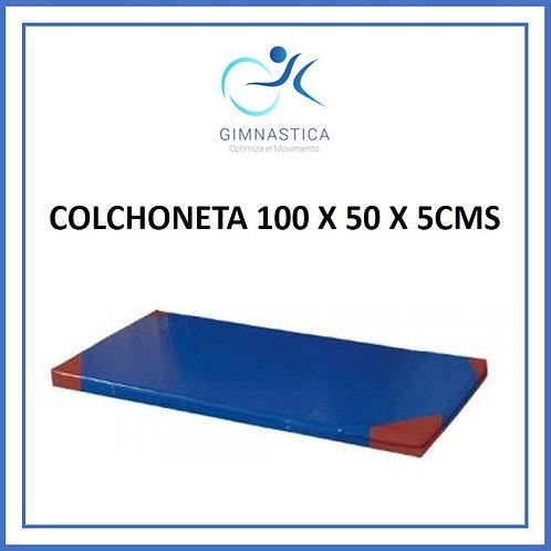COLCHONETA 100 X 50