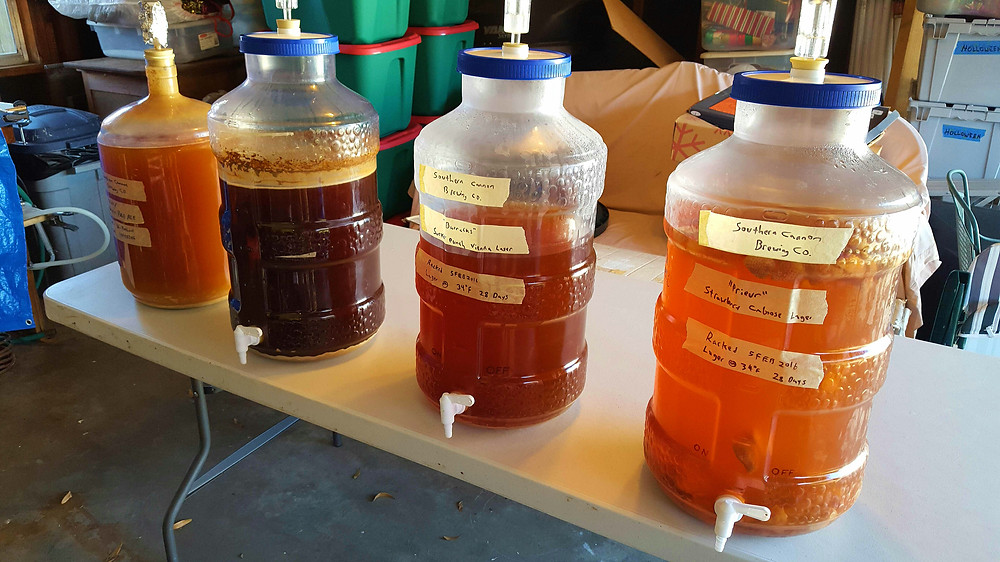 four carboys with fermenting beer on a table