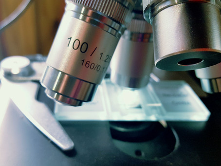 How to Do A Yeast Cell Count