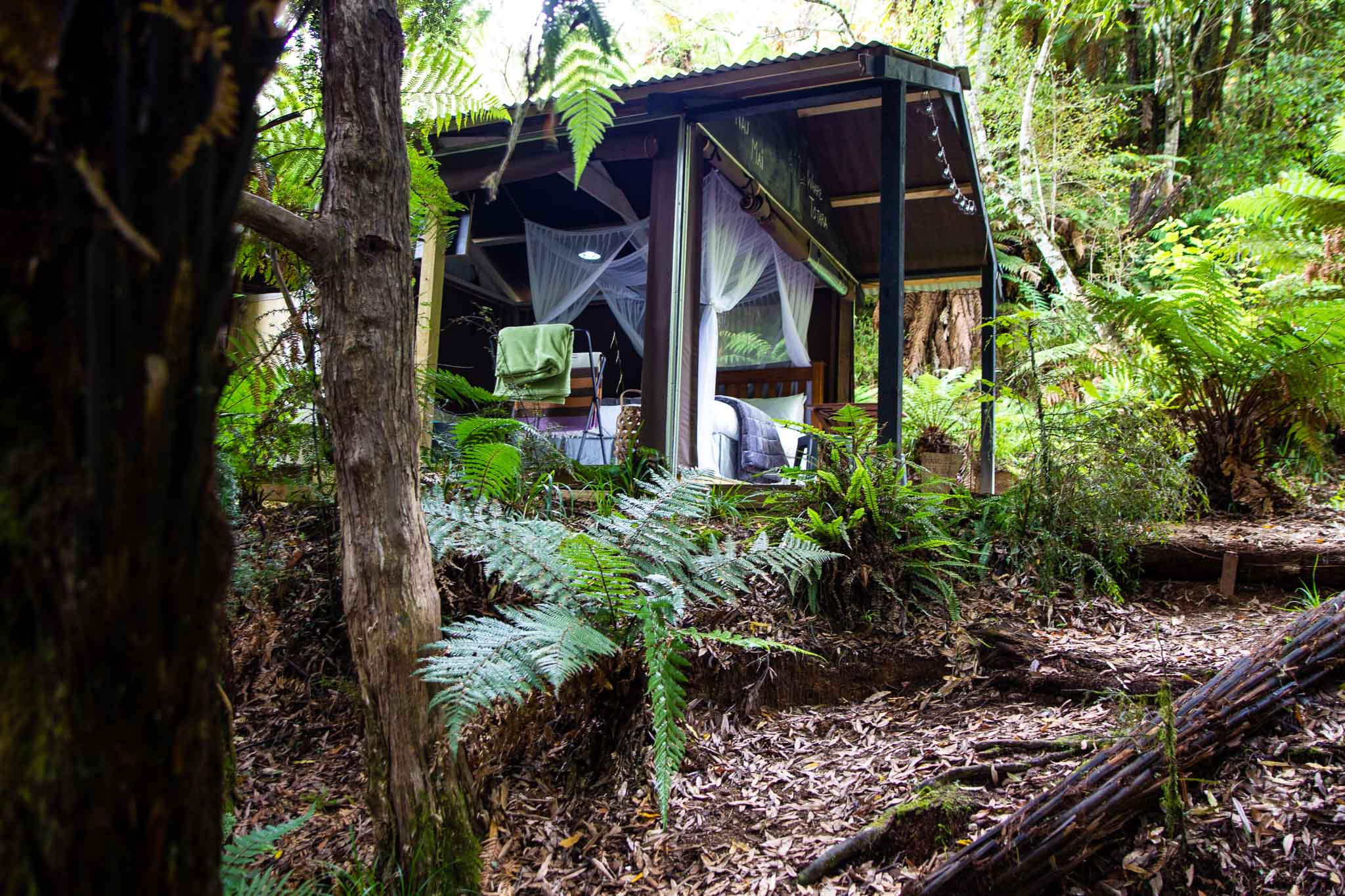 new zealand bush luxury camping trips
