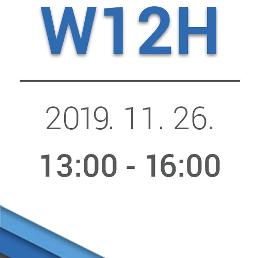 W12H: Hikvision beléptetőrendszer - 2019.11.26.