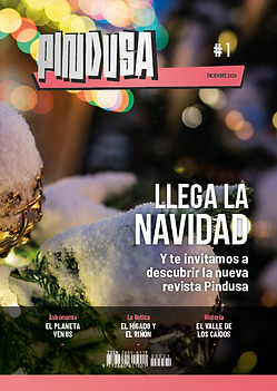 PINDUSA#1 cover4.png