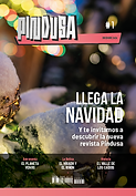 PINDUSA#1 cover.png