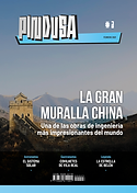 PINDUSA#3 cover.png