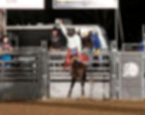 Bronc Riding.jpg