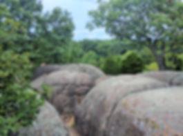 Elephant Rocks 1-1.jpg