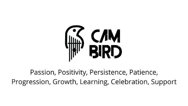 CBM Values.png