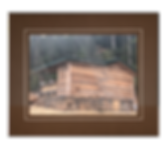 cABIN #15.png