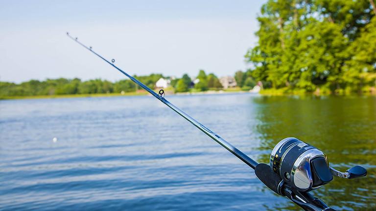 釣魚(暫停)