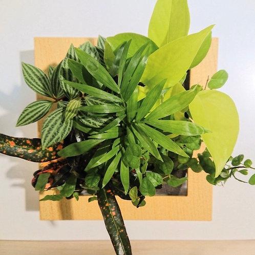 ミドリエ/木目調ナチュラルフレーム(植栽グリーン系)の複製