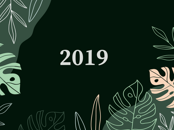 2019 - My year in review