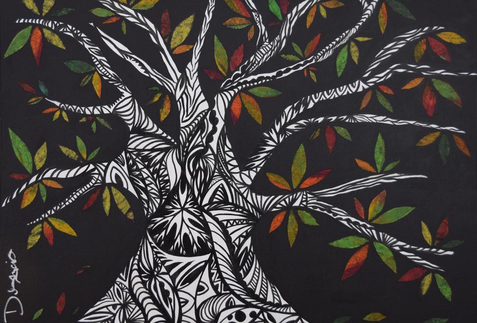Baobab du Québec