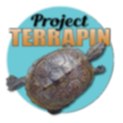 Project_Terrapin_edited_edited.png