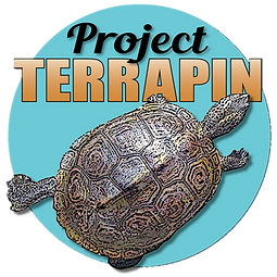 Project_Terrapin_edited_edited_edited.pn