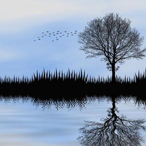 An exercise for inner peace