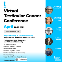 Virtual Conference IG Poster