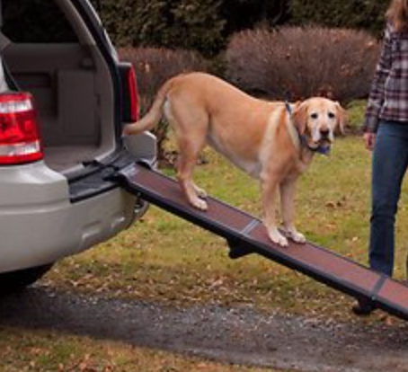 Car Ramp for heavier and senior dogs