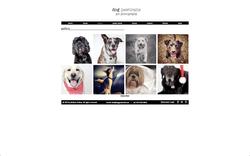 Dog Pawtraits