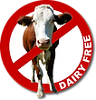 dairy_free21.png