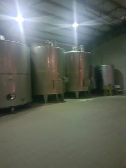 Winery-9