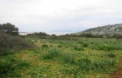 Agios Thomas Island - 10