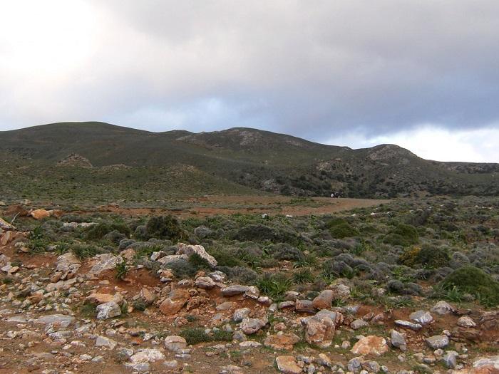Land in Crete-23