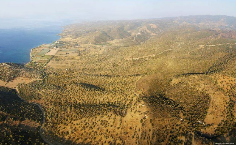 Land in Peloponese-7