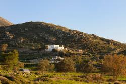 Villa 560m2 Paros-33